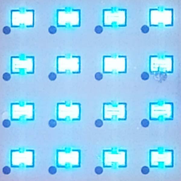 Primer pla de llums LED de llum ultraviolada de Sterixene